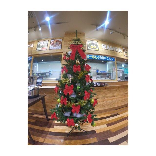 岡崎農場に巨大クリスマスツリーが登場!