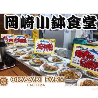 新生岡崎小鉢食堂の新たな定食が お陰様で大人気です✌️